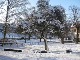 January in Harrogate-2-2010 028