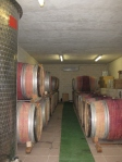 The wine cellars