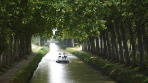 The Canal du Midi: a typical view, courtesy of Wikipedia