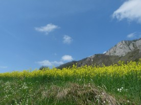 DolomitesApril18,2013 122