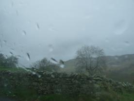 Rain: our constant companion