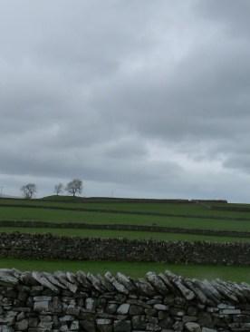 Dry stone walls in Cumbria