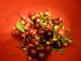 Bad cherries. And discarded stones.
