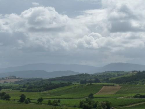 Fields near Villelongue.  A grey summer's morning.