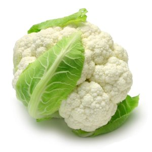 25011-cauliflower-picture-material