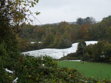 Snowy field, green field