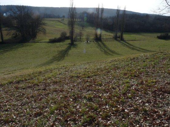 It's not so hard, walking through fields.