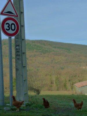 The nearest I came to a traffic jam in Esclagne.