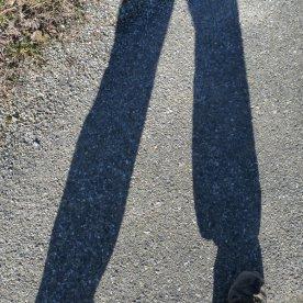 Shadows lengthen as we near home.