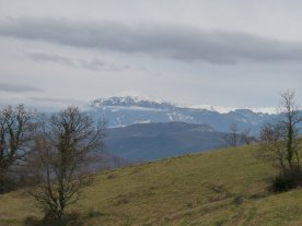 The more distant peaks are still thickly covered in snow.