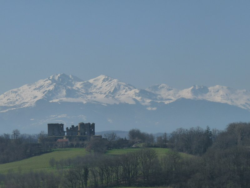 One of the views from our walk last Thursday.  In the distance, the ruined castle of Lagarde.  In the far distance, the Pyrenees.