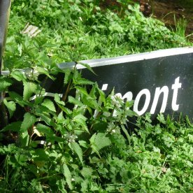 Spotted in a village garden, and obviously nicked from outside some French hamlet. Not Rimont, then, but where?