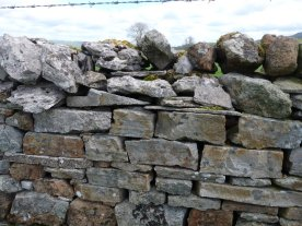 A rather fine dry stone wall.