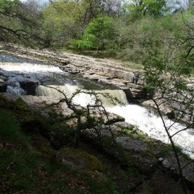The falls at Aysgarth.