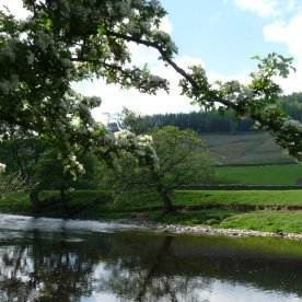 Here's the River Wharfe.