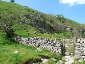 Limestone scree and drystone walls.