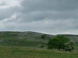 Limestone scenery of the Dales.
