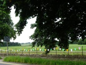 Little knitted jersey bunting in Ripley