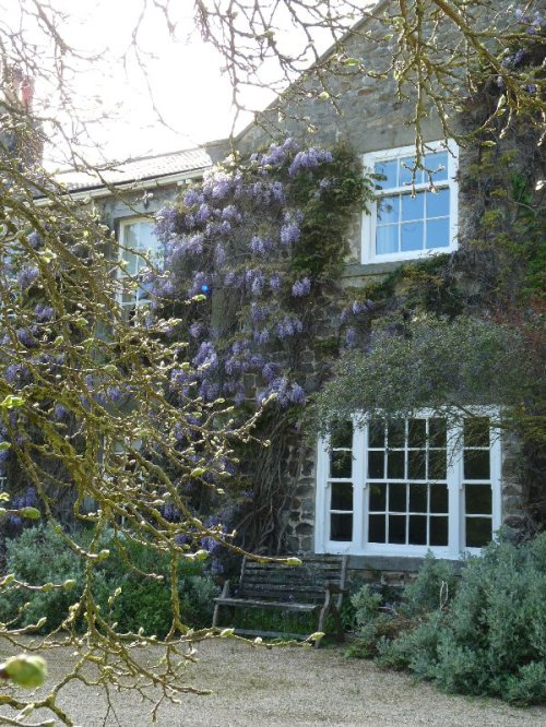 Here's the Old Grange, as it was in May, with the wisteria out.