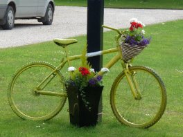 Another yellow bike.