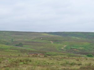 Our moorland path.