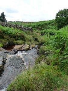 A stream to cross.