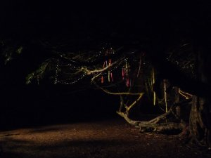 One of the sets, as night falls and we all set off home.