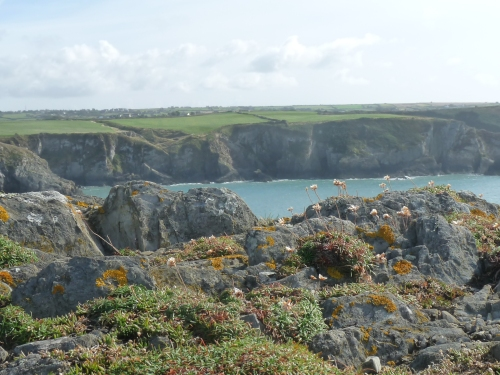 A walk along the Pembrokeshire Coast Path
