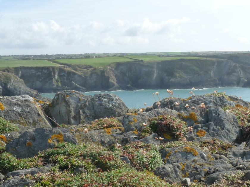 A walk along the Pembrokeshire Coast Path