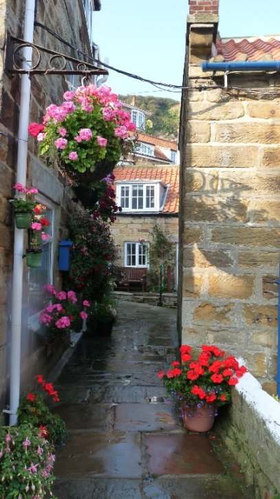 Cottages at Runswick Bay. It's not raining. The flowers have just been watered.