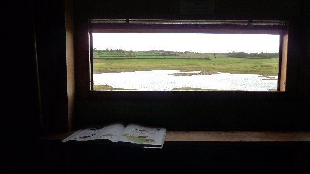 A comfortable hide at Nosterfield: sheepskin covered seats, and lots of birdbooks to refer to come as standard