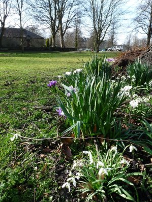 March2015 (106)