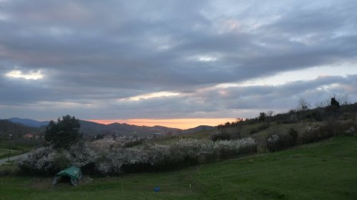 A moody sunset seen from the supper table chez Francis and Tine, with the sloe trees in full blossom.