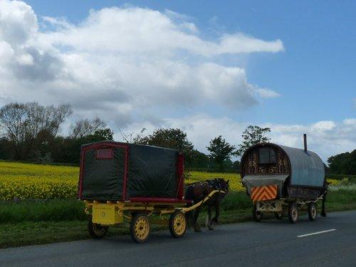 A short convoy of vardoes.