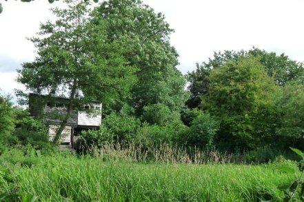 A bird-hide in the woods.