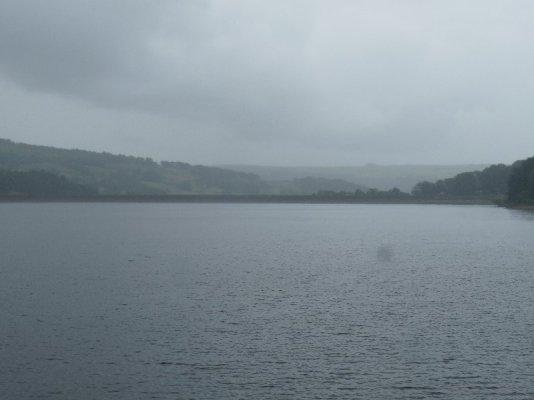 A very rainy view.