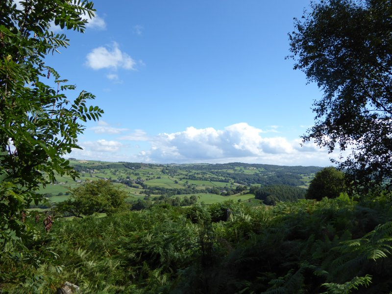 Looking across towards the Dales.