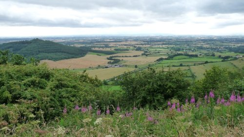 Looking down from Sutton Bank.