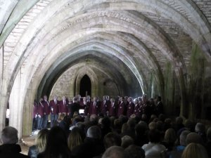 Performing in the cellarium