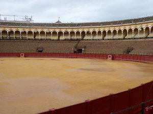 Plaza de Toros de la Maestranza: not a bull in sight today.