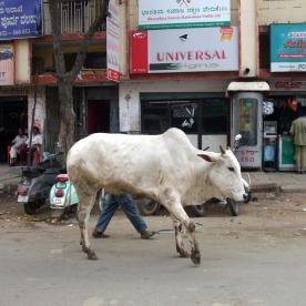 Bangalore street scene.