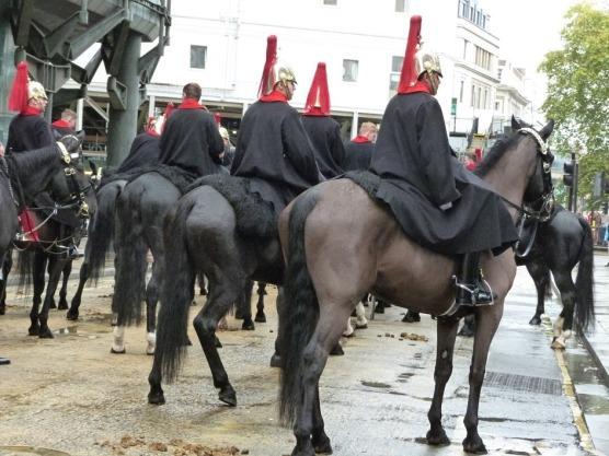 The Royal Horse Guards wait patiently to take their place in the procession.
