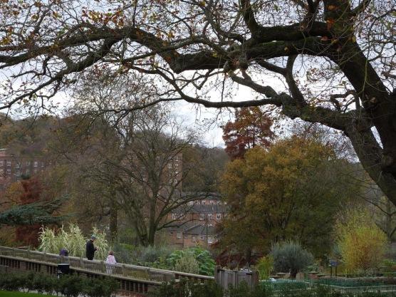 Wandering round the Horniman Gardens.