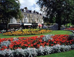 Harrogate: Montpellier
