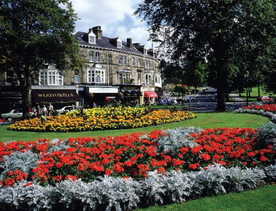 Harrogate: Montpellier