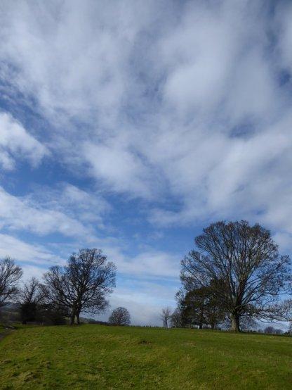 Skies near Danby Hall.