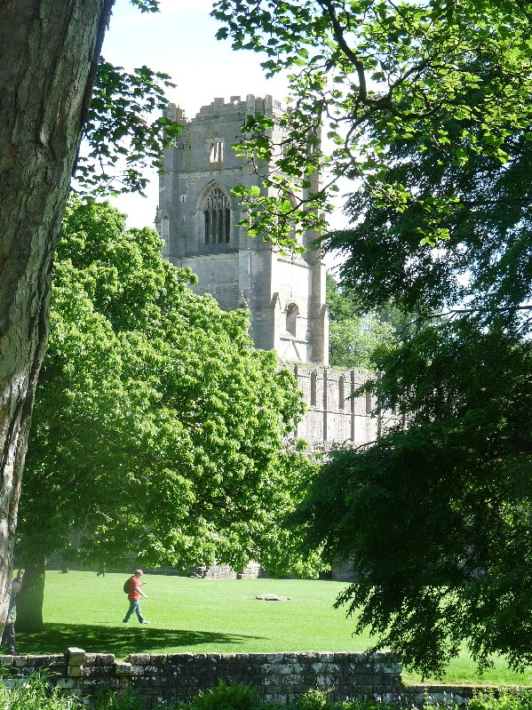 Huby's tower glimpsed through the trees on a summer's day.