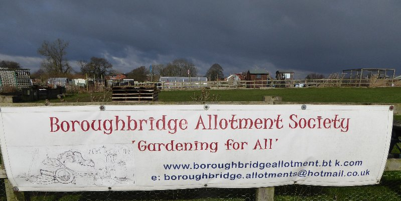 AllotmentsBoroughbridgeMarch2016 011