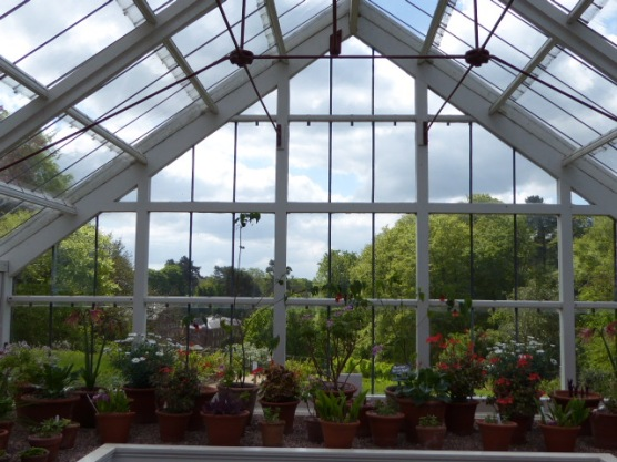 Greenhouse at Quarry Bank.