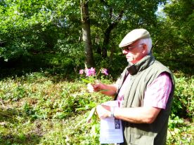Colin gives a few tips on Himalayan Balsam Management.